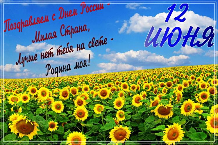 Скачать онлайн трепетную открытку на день России (12 июня)! Поделиться в вацап!