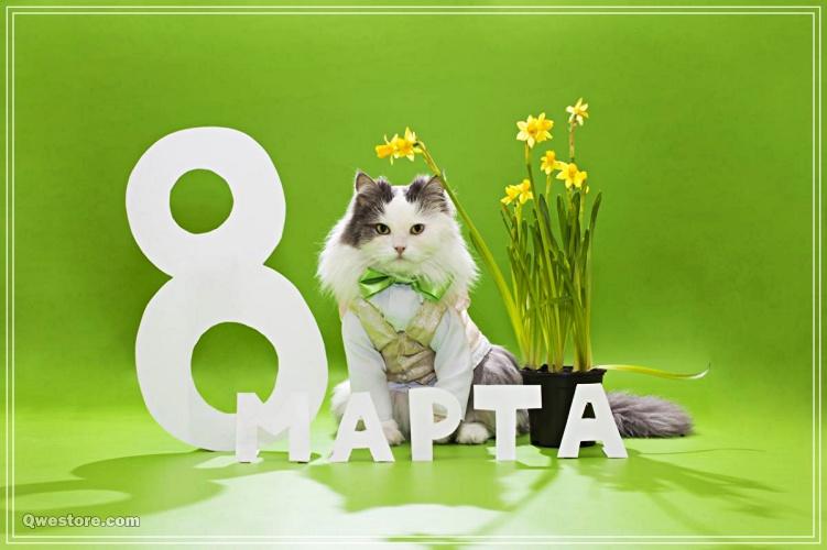 Скачать бесплатно праздничную картинку на международный женский день (8 марта)! Переслать в пинтерест!