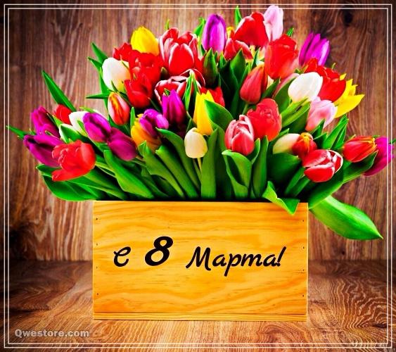 Скачать яркую картинку на международный женский день (8 марта)! Отправить по сети!