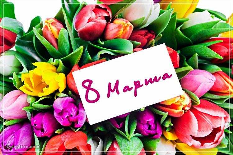 Скачать онлайн душевную картинку на международный женский день (8 марта)! Переслать в telegram!