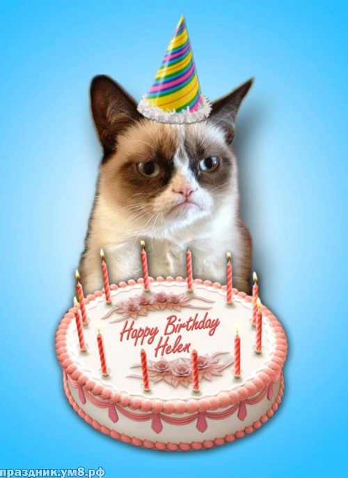Скачать бесплатно жизнедарящую картинку с днём рождения мужчине (лучшее в стихах)! Отправить по сети!