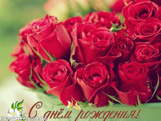Скачать гармоничную открытку с днем рождения коллеге женщине от любимых коллег (стихи и пожелания)! Поделиться в pinterest!