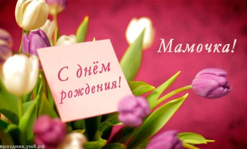 Скачать онлайн роскошную открытку с днем рождения маме, мамулечке (стихи и пожелания)! Поделиться в facebook!