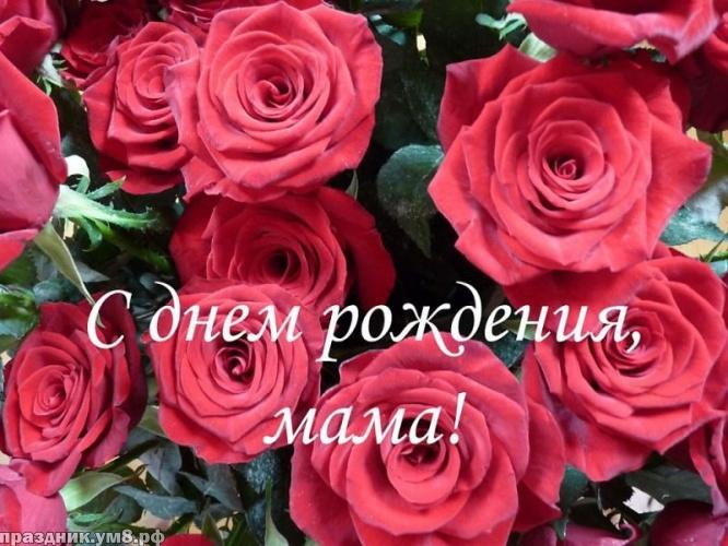 Найти воздушную картинку на день рождения маме, любимой мамочке (проза и стихи)! Переслать в viber!