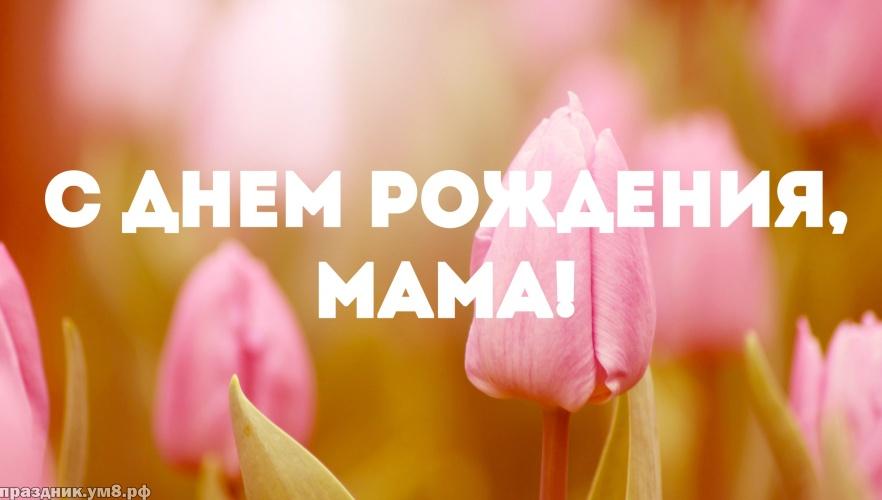 Найти добрую открытку на день рождения для мамы, для мамули! Отправить на вацап!