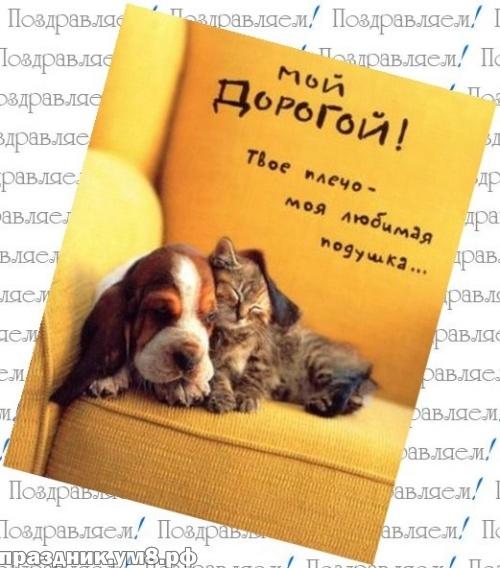 Скачать онлайн талантливую открытку на день рождения мужу, любимому от жены (проза и стихи)! Поделиться в facebook!