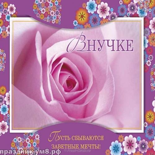 Скачать бесплатно неповторимую открытку на день рождения любимой внучке от деда (поздравление)! Для инстаграма!