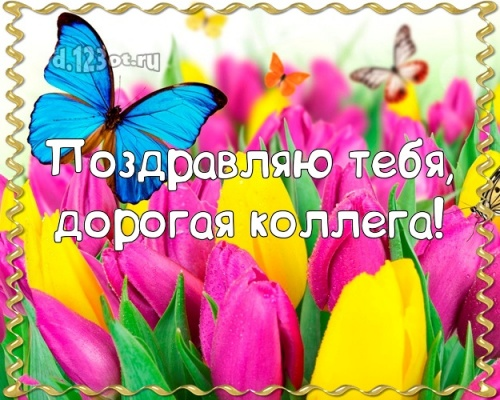 Скачать бесплатно солнечную картинку на день рождения для коллеги! Проза и стихи d.123ot.ru! Отправить на вацап!