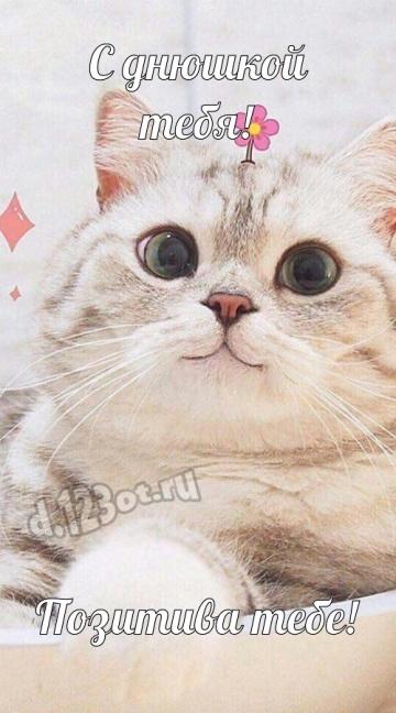 Скачать онлайн достойную картинку с днём рождения, друзья! Милые поздравления с сайта d.123ot.ru! Отправить по сети!