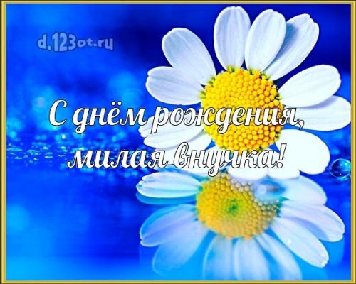 Скачать бесплатно ненаглядную картинку на день рождения лучшей внучке в мире (поздравление d.123ot.ru)! Отправить в instagram!