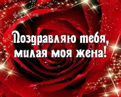 Скачать онлайн нужную картинку на день рождения женушке, любимой жене! Проза и стихи d.123ot.ru! Поделиться в whatsApp!