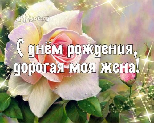 Найти лучшую открытку на день рождения женушке, любимой жене! Проза и стихи d.123ot.ru! Поделиться в facebook!