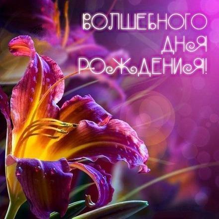 Скачать бесплатно волшебную картинку на день рождения для всех, лучшие картинки с пожеланиями с 123ot.ru! Поделиться в вацап!