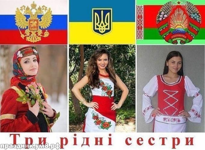 Скачать бесплатно прекраснейшую открытку с днем единения славян, с днём дружбы подругам, друзьям, коллегам! Отправить в вк, facebook!