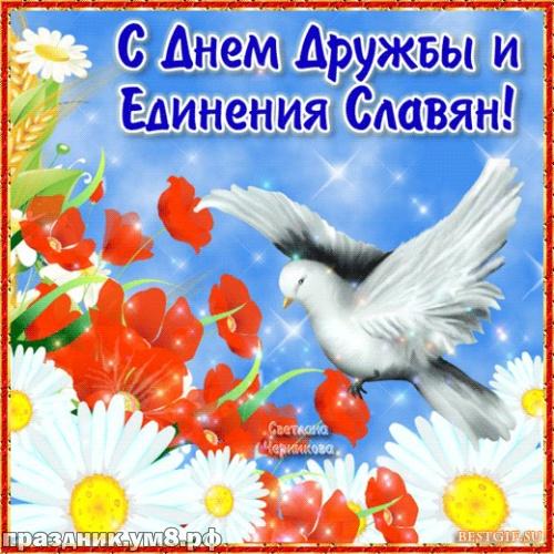 Скачать чудесную открытку с днем единения славян подруге, коллеге, другу! Красивые пожелания! Отправить на вацап!