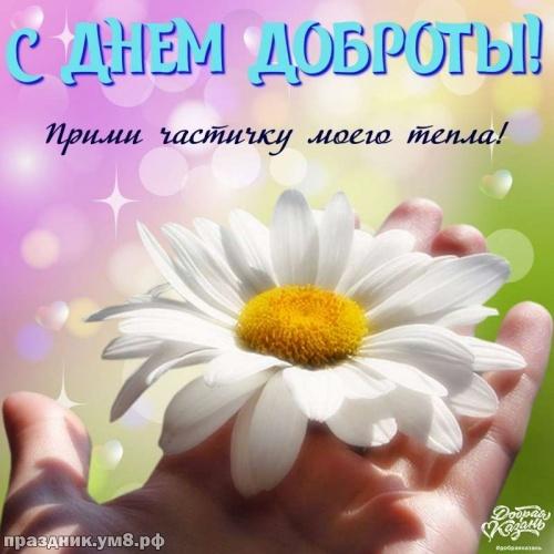 Скачать онлайн драгоценнейшую картинку на день доброты (красивые открытки на день добра)! Пожелания своими словами друзьям! Отправить в телеграм!