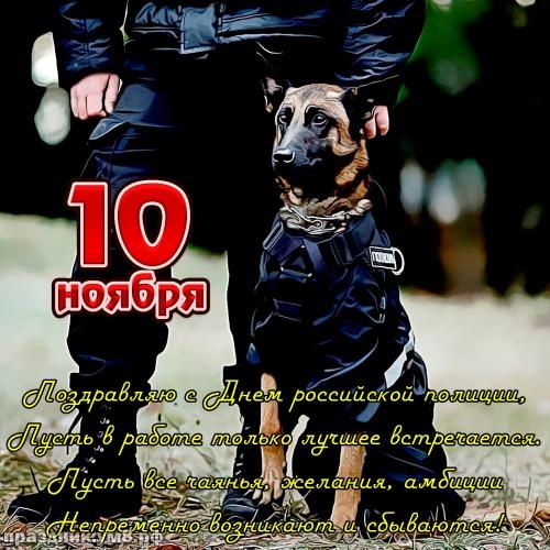 Скачать онлайн видную картинку на день полиции, для друга и коллеги! Красивые открытки друзьям и коллегам в полиции! Поделиться в facebook!