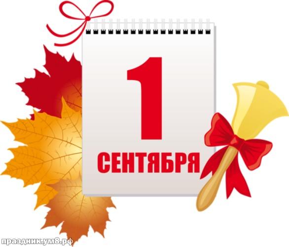 Найти желанную картинку (открытки на день знаний, картинки с 1 сентября) с праздником! С началом учебного года! Поделиться в вк, одноклассники, вацап!
