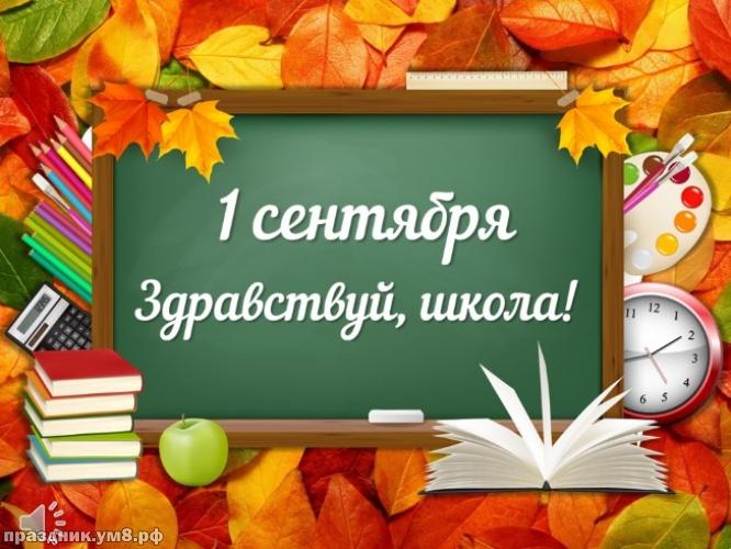 Скачать элегантную открытку на день знаний (красивое поздравление в прозе)! Детям и учителям! 1 сентября! Для инстаграм!