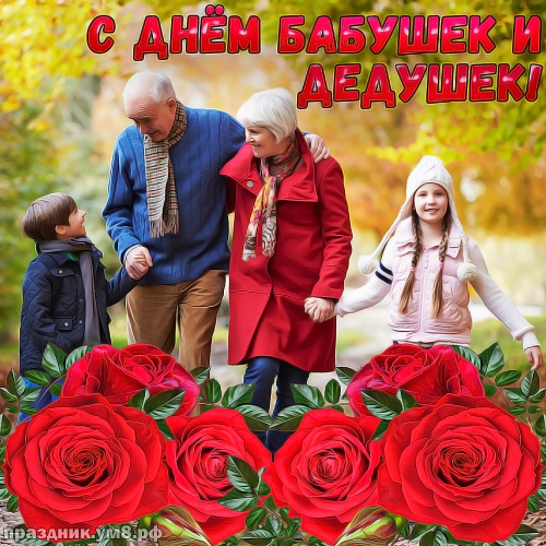Найти добрейшую картинку с днём бабушек и дедушек! Примите поздравления, дорогие дедушка и бабушка! Отправить на вацап!