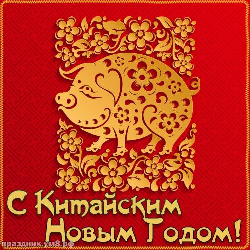 Скачать достойную картинку с китайским новым годом, красивое поздравление в прозе! Переслать на ватсап!