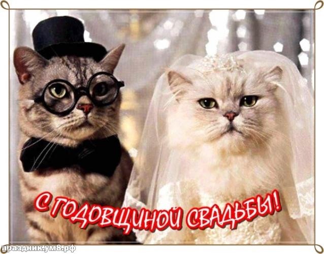 Скачать онлайн искреннюю открытку с годовщиной свадьбы для семьи! Красивые открытки на день годовщины! Переслать в вайбер!