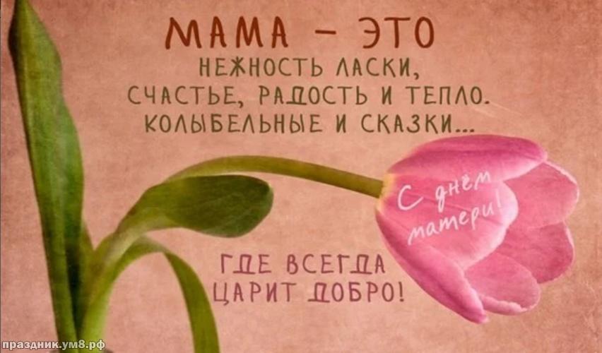 Скачать бесплатно добрую открытку с днем матери! Примите поздравления, милые мамы! Переслать в instagram!
