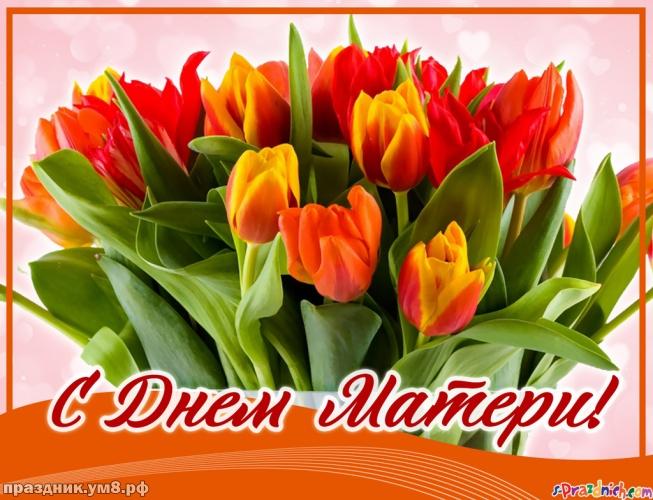 Скачать онлайн жизнерадостную открытку на день матери (красивое поздравление в прозе)! Маме! Добра всем! Переслать в пинтерест!