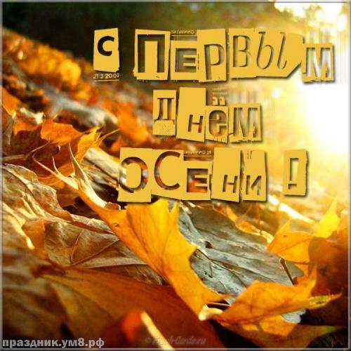 Скачать онлайн эффектную картинку с первым днём осени, открытки осень, картинки с осенью, 1 сентября! Отправить на вацап!