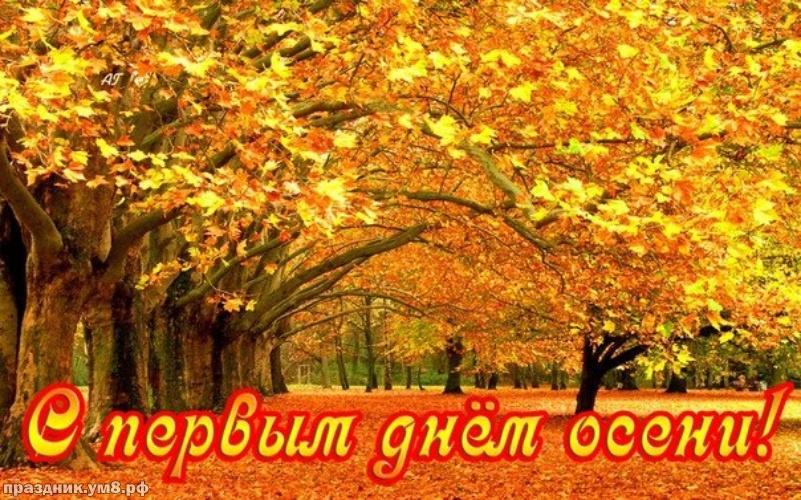 Найти отпадную картинку с первым днём осени, дорогие друзья! Ура! Осень идёт, осени дорогу! Для вк, ватсап, одноклассники!