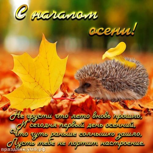 Найти неповторимую открытку с первым днём осени, дорогие друзья! Ура! Осень идёт, осени дорогу! Отправить в вк, facebook!