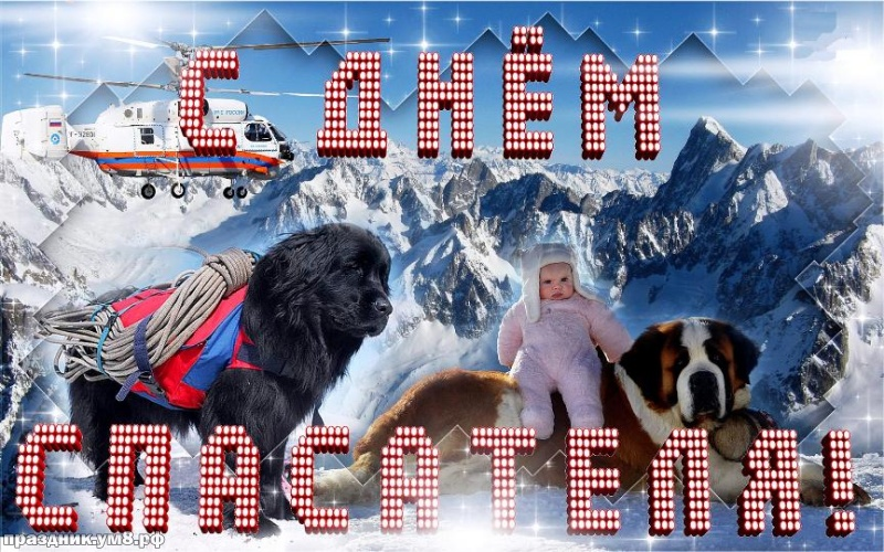 Скачать онлайн шикарную картинку (открытки на день спасателя, картинки с днем МЧС) с праздником! Для спасателя! Поделиться в pinterest!