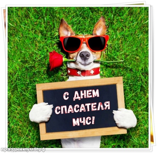Скачать чуткую открытку на день спасателя (красивые открытки на день МЧС)! Пожелания своими словами спасателям! Поделиться в facebook!
