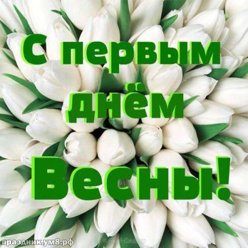 Скачать бесплатно стильную картинку с первым днём весны, 1 марта, красивое поздравление в прозе! Переслать в telegram!