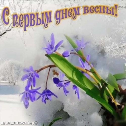 Скачать достойную картинку с первым днём весны, дорогие друзья! Ура! Весна идёт, весне дорогу! Переслать в instagram!