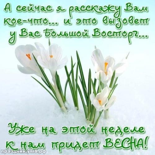 Скачать бесплатно эмоциональную открытку с первым днём весны, 1 марта, красивое поздравление в прозе! Переслать на ватсап!