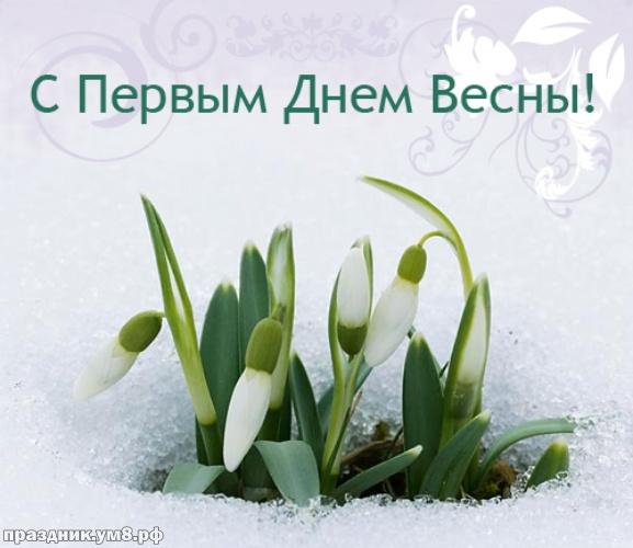 Скачать бесплатно золотую картинку с первым днём весны, открытки весны, картинки с весной, 1 марта! Для инстаграм!