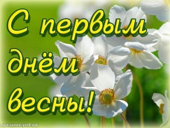 Скачать онлайн добрую картинку с первым днём весны! Красивые пожелания для друзей и родных! Переслать в пинтерест!