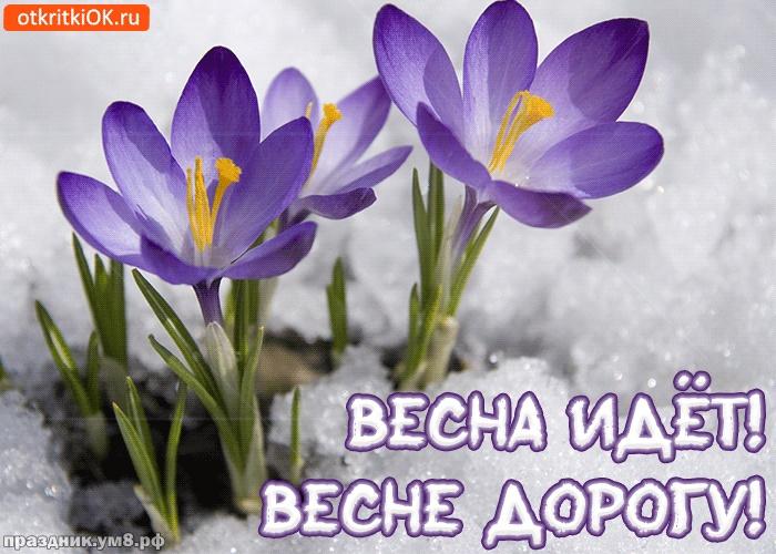 Скачать неземную картинку с первым днём весны, 1 марта, красивое поздравление в прозе! Отправить на вацап!