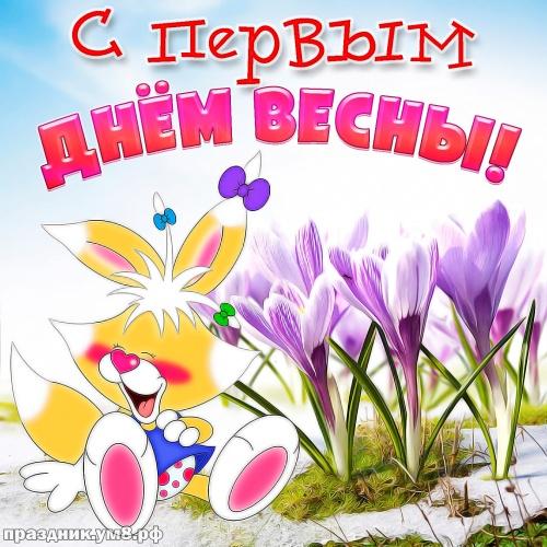 Найти креативную картинку с первым днём весны, 1 марта, красивое поздравление в прозе! Отправить в instagram!