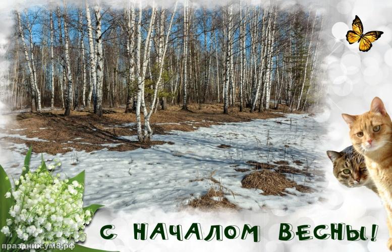 Скачать драгоценнейшую открытку с первым днём весны! Красивые пожелания для друзей и родных! Поделиться в whatsApp!