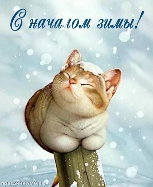 Найти видную открытку с первым днём зимы, 1 декабря, красивое поздравление в прозе! Отправить на вацап!