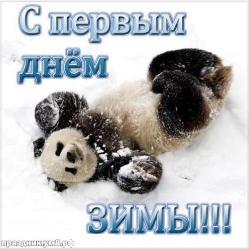 Скачать бесплатно драгоценную открытку с первым днём зимы, дорогие друзья! Ура! Зима идёт, зиме дорогу! Поделиться в pinterest!