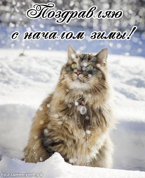 Скачать онлайн драгоценную открытку с первым днём зимы! С праздником, друзья мои! Переслать в instagram!