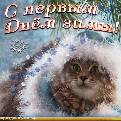 Найти лучшую открытку с первым днём зимы, 1 декабря! Красивые открытки! Переслать в viber!