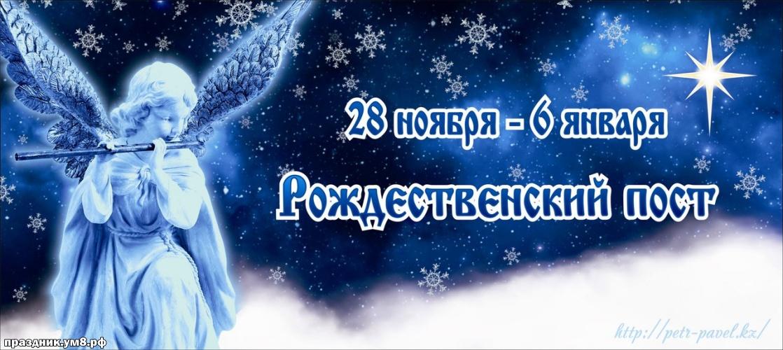 Скачать онлайн тактичную открытку с рождественского постом, лучшие картинки с началом рождественского поста, с праздником! Поделиться в вацап!