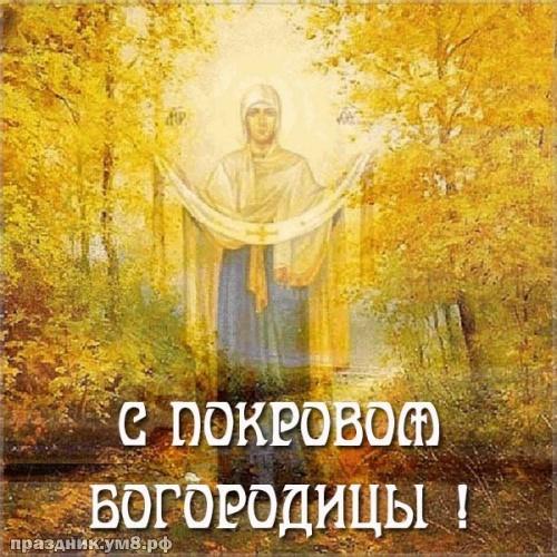 Скачать прекраснейшую картинку с покровом Пресвятой Богородицы, красивые открытки, пожелания своими словами! Переслать в пинтерест!