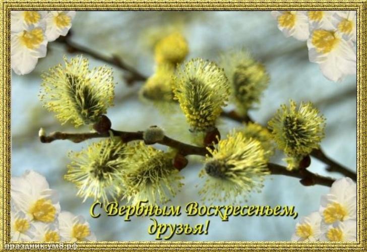 Скачать бесплатно желанную картинку с вербным воскресеньем, красивое поздравление в прозе! Для инстаграма!