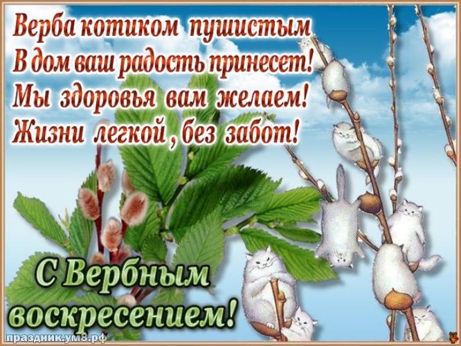 Скачать бесплатно таинственную открытку с вербным воскресеньем, красивые пожелания! Для вк, ватсап, одноклассники!