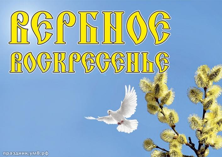 Скачать онлайн манящую картинку с вербным воскресеньем, красивое поздравление в прозе! Переслать в пинтерест!